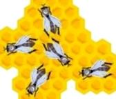 За счет чего можно укрепить кормовую базу пчеловодства