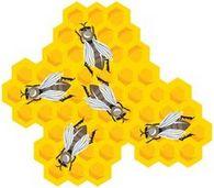 Какая производительность пчел-водоносов?