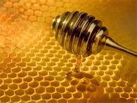 Когда откачивают мед от больных пчелосемей?