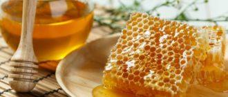 Как хранить соты с медом