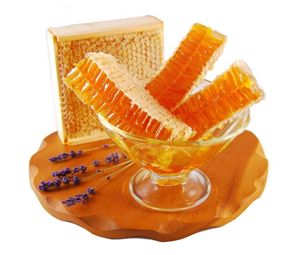 Тонкости и особенности процесса хранения меда в сотах